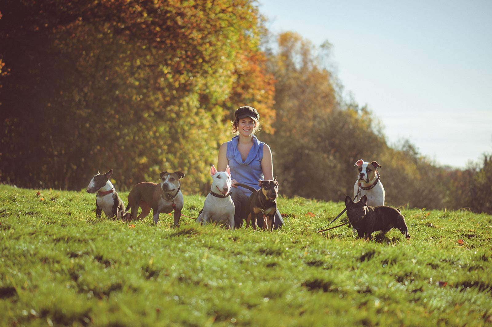 Walkies in the Woods | Guildford Dog Photography